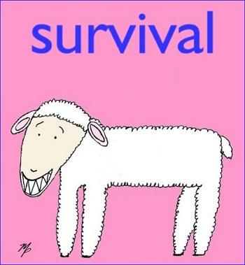 survival lamb -  January 27, 2013p